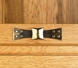 Top Knobs Gold Hardware Pull